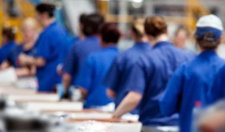 Sem experiência: Seleção para Auxiliar de Fabricação